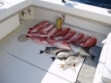 Boatload October 2005