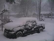 Tundra in snow, 01/12/10