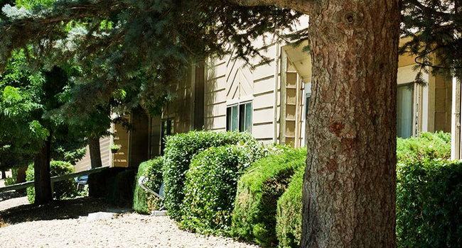 Mature Apartment Trees