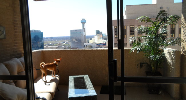 Image Of Manor House Apartments In Dallas Tx